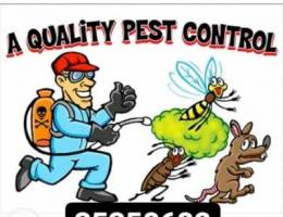 Past control cleaning company