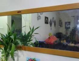 Big mirror for sale