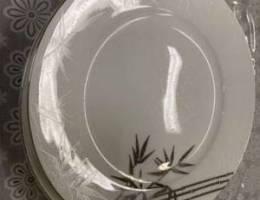 Big plate x 2